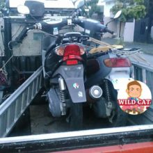 桑名市筒尾 バイク回収 ジョグ(SA16) 無料回収の写真